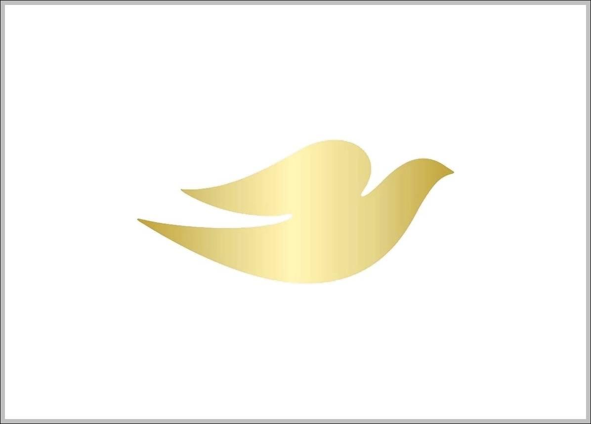 Dove - Brand and Social Media case study